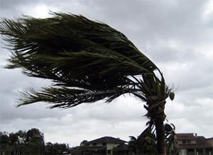 hurricane-shutter-company-maui